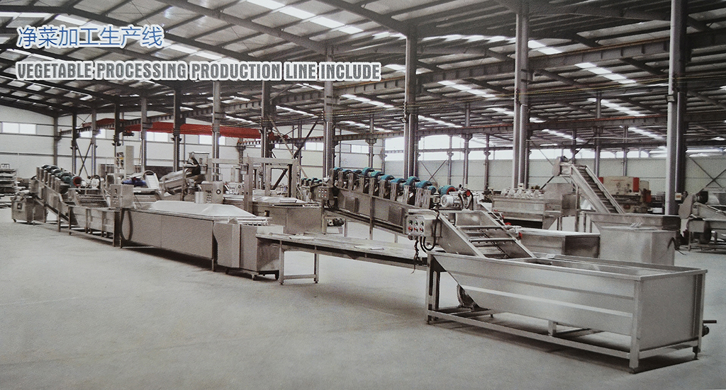 Vegetable processing production line
